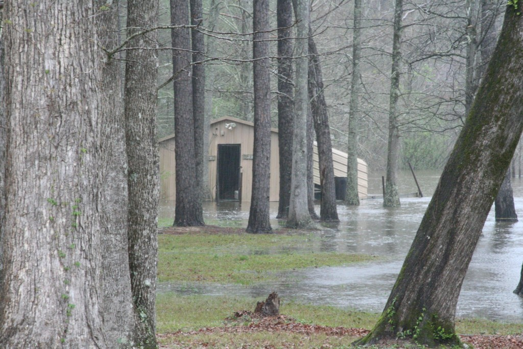 Someone's boat house on Anacoco Lake. Even people on the lakes of Vernon Parish experienced some flooding of their property, however, the most extreme degree of flooding comes from those living south of the Toledo Bend Reservoir.