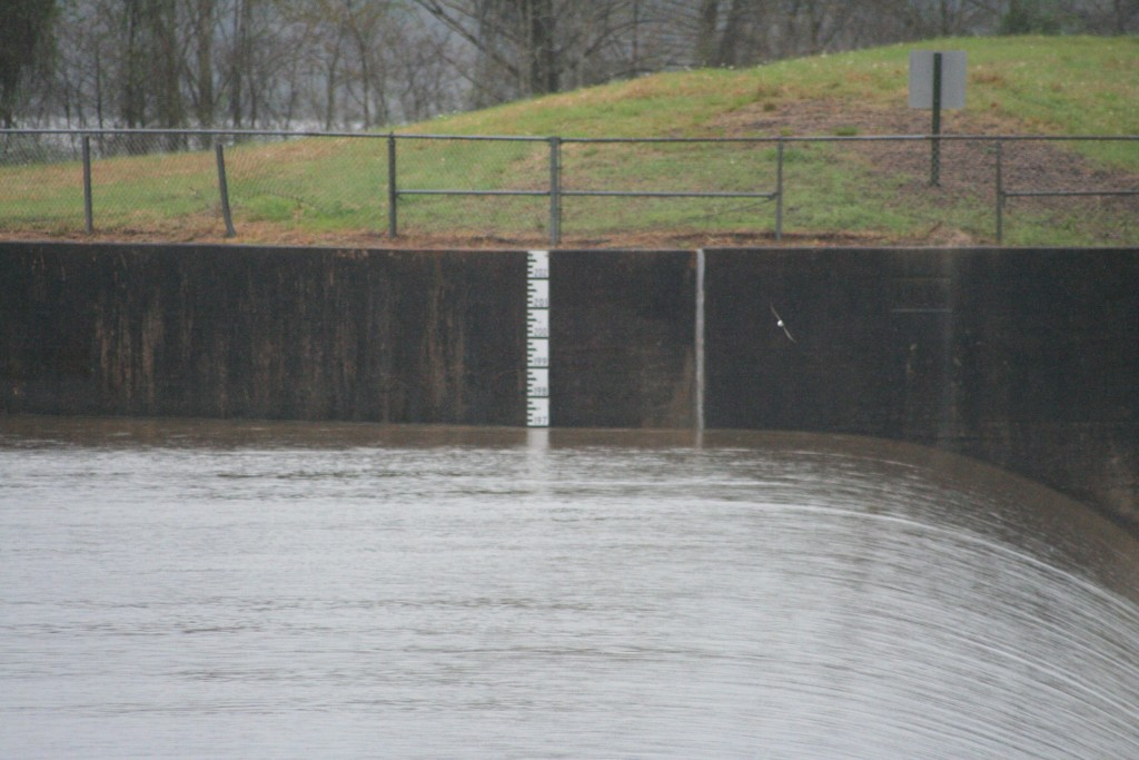 I am not entirely sure how to read that meter. But there it is. This is actually the first time I have seen the Anacoco Lake Spillway from the bank. If the bank is any indicator, it was definitely close to that 202 mark, which as alarming amount of water.