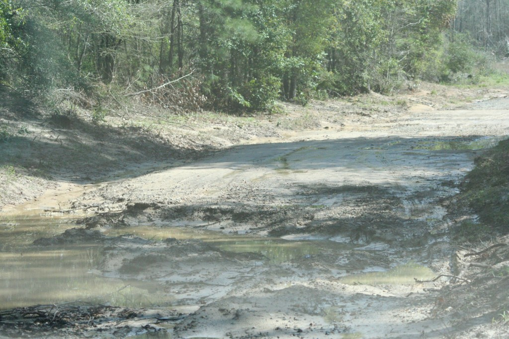 This is after the waters left Lynn Davis Rd. It left a pretty nasty washout.